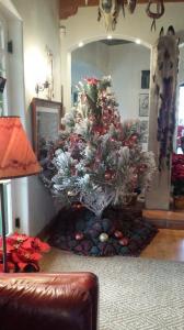 Joey's Montana Ponderosa Pine Christmas Tree